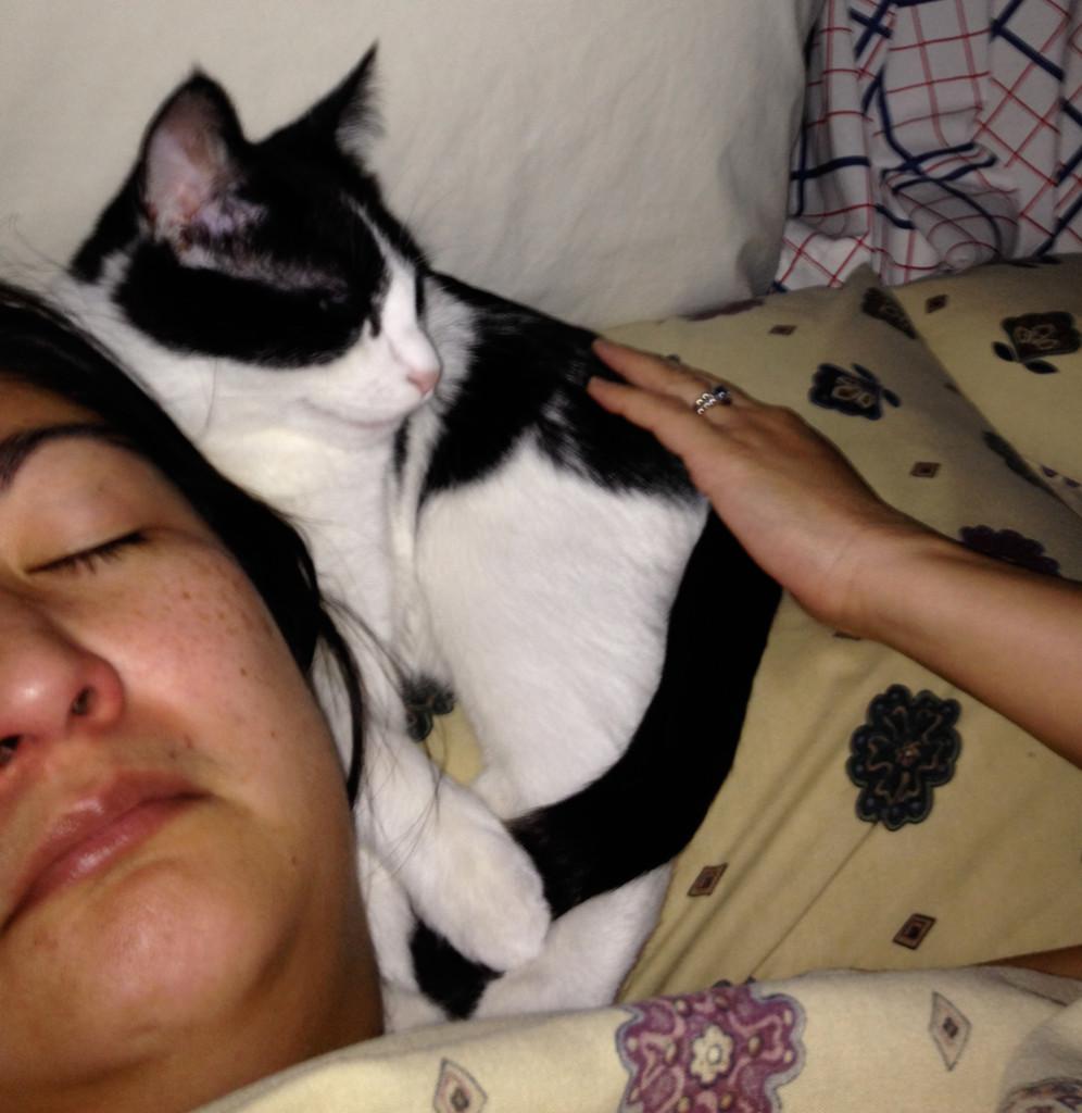 Kitten being an earmuff